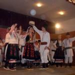 sajt-kobisnica1